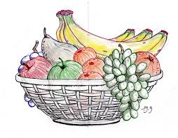 fruit basket pencil sketch of fruit basket drawing sketch picture