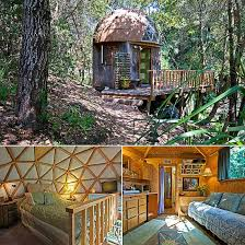 ls that look like trees 145 best a tree house in paradise images on pinterest tree