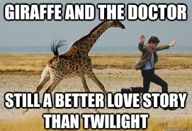 Drunk Giraffe Meme - 22 most funny giraffe pictures