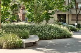 park siege social massifs de graminées au siège social groupe rapp landscaping