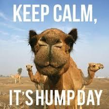 Calm Meme - keep calm it s humpday meme xyz