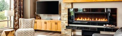 gas fireplace cleaning portland oregon companies maintenance 1115