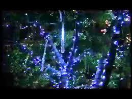 holiday lights and magic outdoor tree christmas lights youtube