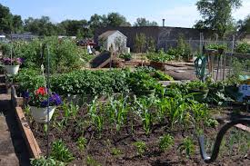 Urban Gardens Community Gardens