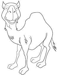 camel coloring pages coloring home