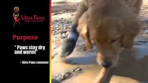 ultra paws pawtectors dog boots youtube