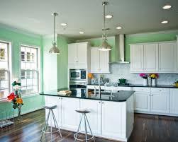 decor elegant nice kitchen cabinet colors famous kitchen cabinet