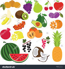 fruit elements set collection coloring book stock vector 708310576