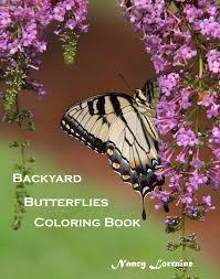 nancy lorraine books the butterfly adventure