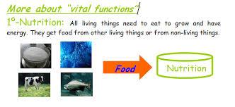 unit 1 natural science