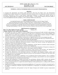 Auditor Resume Sample Book Report Ideas Grade 1 How To Build A Resume Free Top Thesis