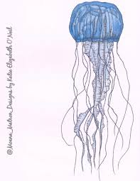 jellyfish drawing done with blue copic markers and a sakura micron
