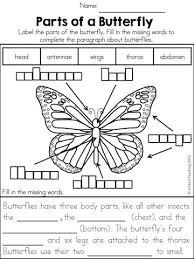 insects no prep activities a butterfly the sentence and the