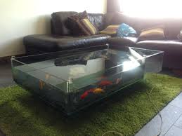 Aquarium Coffee Table Tips To Build Aquarium Coffee Table Interior Decorating Colors