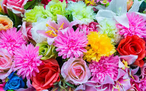 can you name these flowers on sight playbuzz