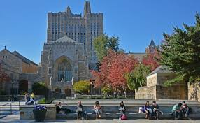 office of career strategy yale university