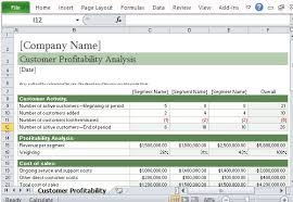 Customer Management Excel Template How To Easily Perform A Customer Profitability Analysis In Excel