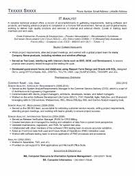 It Risk Management Resume Resume Cover Letter Samples For Electricians Common App Essay