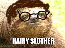 Funny Sloths Memes - new 24 funny sloth meme wallpaper site wallpaper site