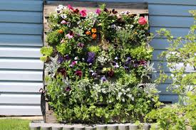 pallet garden comfy country creations