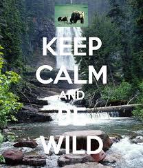Original Keep Calm Meme - keep calm and be wild poster meme keep calm o matic national
