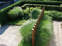 contemporary garden with boxwood hedges and ornamental grasses