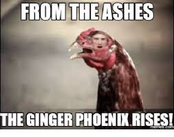 Ginger Meme - best 25 ginger meme ideas on pinterest funny ginger sorry