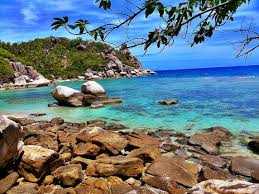 koh tao koh tao resort koh tao island july 2014