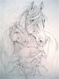 13 best chevaux images on pinterest drawings horse drawings and