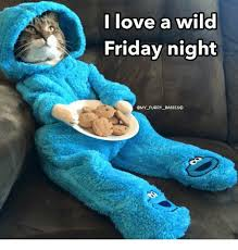 Friday Night Meme - i love a wild friday night cmy furry babieso meme on me me