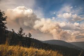 British Columbia Wildfire Service by Friday U0027s Burn Out Of The 150 Mile House Wildfire A Success