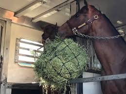 Kansas how far can a horse travel in a day images Kc horse transport inc transportation service atascadero