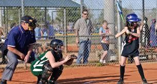 cheap softball bats best softball bats approved bat reviews updated for 2018
