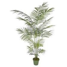 Artificial Decorative Trees For The Home Artificial Trees You U0027ll Love Wayfair