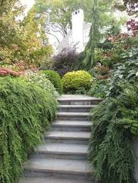 Blue Ridge Landscaping by Landscaping A Bank Or Slope Landscaping A Slope Pinterest