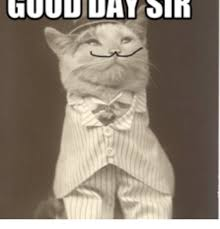Good Day Sir Meme - 25 best memes about good day sir meme good day sir memes