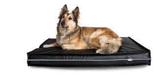 materasso per cani sc pet sc pet marchio cucce per cani e gatti 100