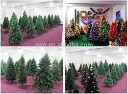 2 5m white tree sale new zealand pine wooden shoe tree