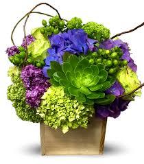 newport florist newport s beauty secret by newport florist nf246 in newport