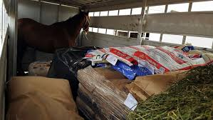 Wildfire Ranch by Donations And Help Roll In To Those Impacted By Wildfires In