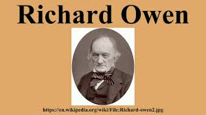 Ottomans Wiki by Richard Owen Youtube