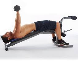 pure fitness fid weight bench review