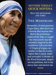 mother teresa an authorized biography summary mother teresa essay in hindi essay on mother teresa in gujarati