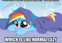 My Little Pony Meme Generator - unique moving meme generator ments for or any other webpage or blog