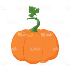 pumpkin cartoon pic pumpkin icon cartoon single plant icon from the big farm stock