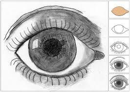 best 25 drawing an eye ideas on pinterest an eye eye drawings