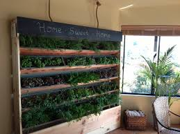 vertical indoor garden diy gardening ideas