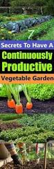 2446 best diy garden ideas images on pinterest vegetable garden