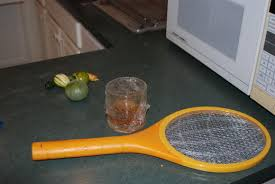 How Do You Get Rid Of Fruit Flies In Your Kitchen Chowhound - Small flies around kitchen sink