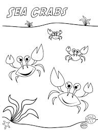 sea crabs jpg